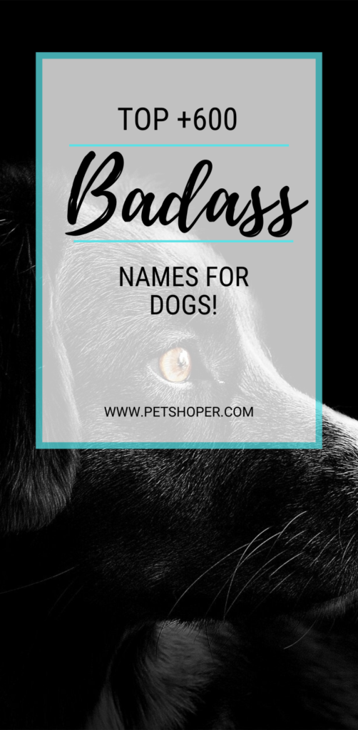 Badass Names For Dogs pin